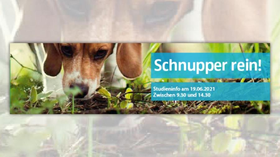 gross_Schnupper_rein_19.06.2021